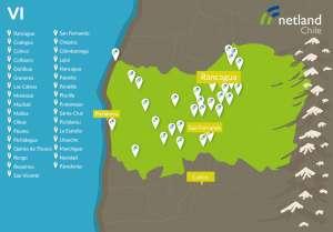 mapa_netland_regiones_VIregion