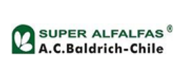 superalfalfas